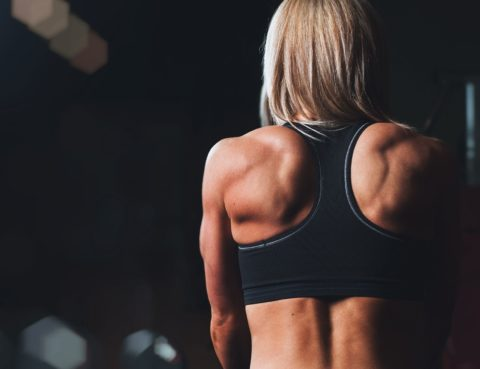 Sommerfigur 2018 - Muskelaufbau Ratgeber